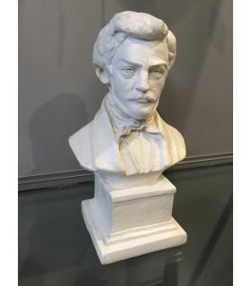 Busto Donizetti - Medio...